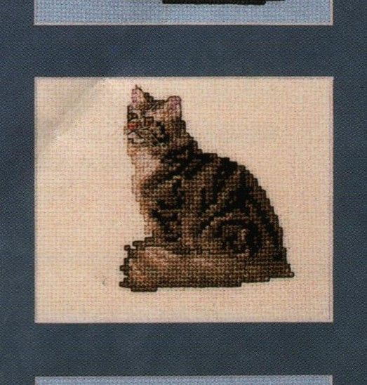 Maine Coon Cat  Pegasus Oringinals  In 1996 DMC foss for Brown Tabby..stitching it on 28 count ...wish me luck